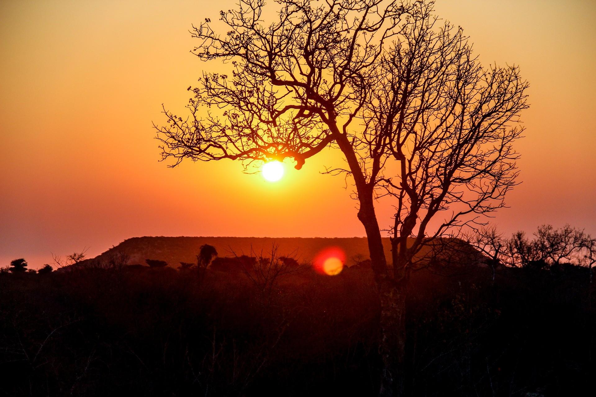Un paysage malgache