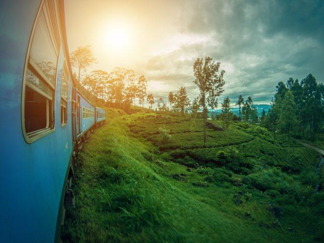 Paysage du Sri Lanka.