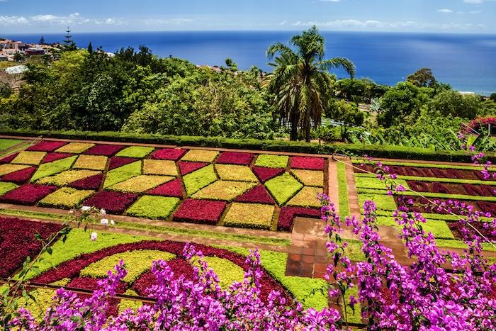 Le jardin boatnique de Funchal, île de Madère.
